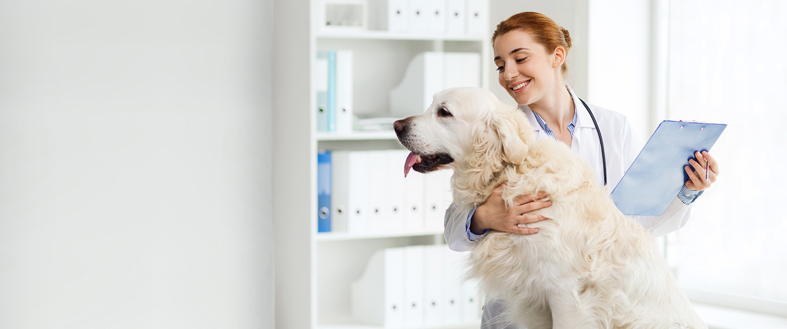 Reliable Veterinary Services in Louisville